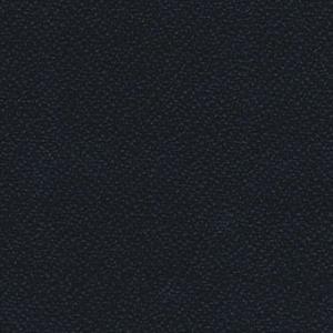 YS016 Arawak