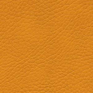 mango.F6461666