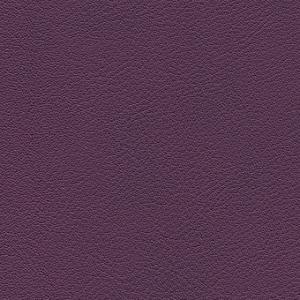 amethyst-F6411155