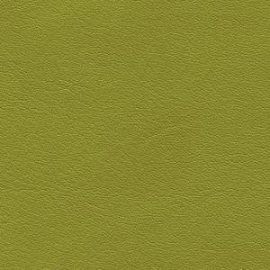 limone-F6411195