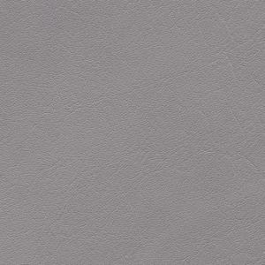 platin-F6411012