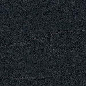 schwarz-F6411011